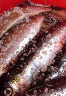 bigoli_salsa_sardine