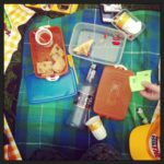 pic-nic con Estathé e vodka