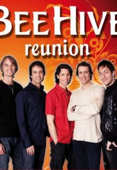 bee-hive-reunion