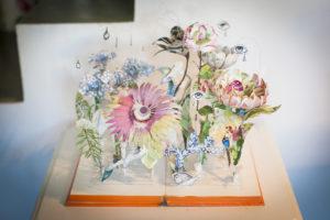 beauty-in-wonderland-primo-libro-work-in-progress