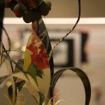 elena-borghi-altrove-vernissage9