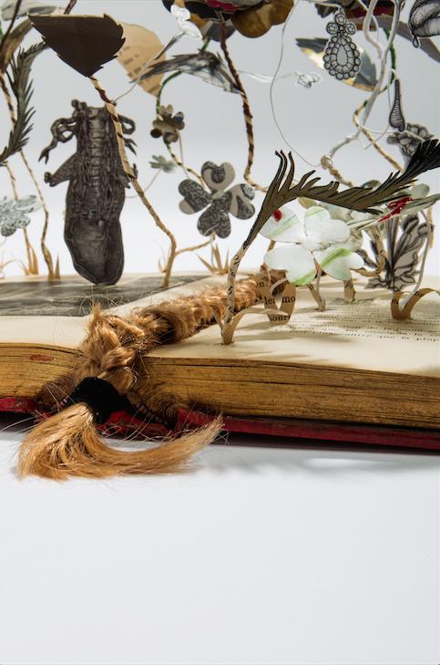 marie-antoinette-elena-borghi-fiori-libri-carta