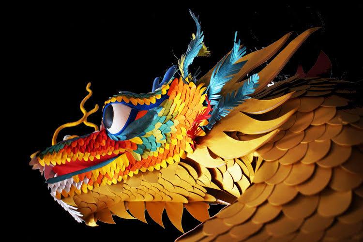 elena-borghi-paper-visions-drago